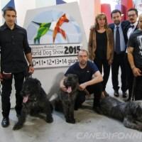 World dog show 2015
